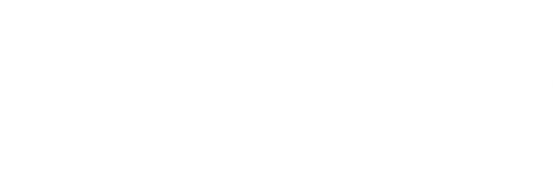 Grill-Evolution
