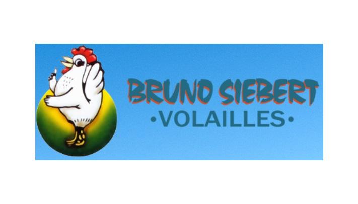bruno-siebert